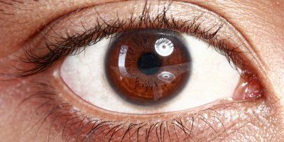 google eye care india