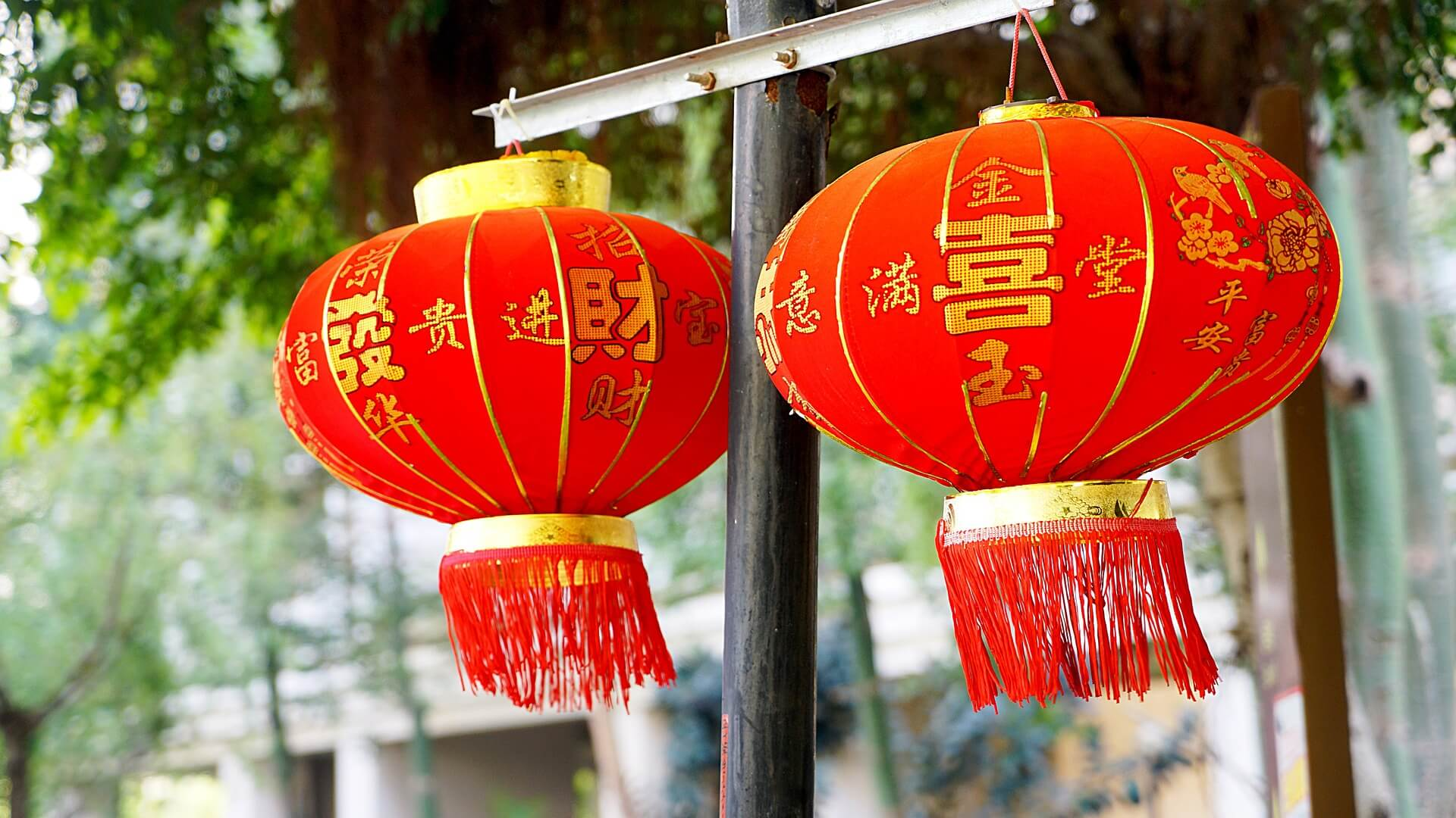 Chinese New Year Red Lamps
