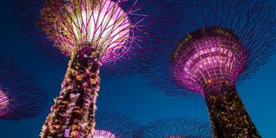 Singapore needs more tech talent.