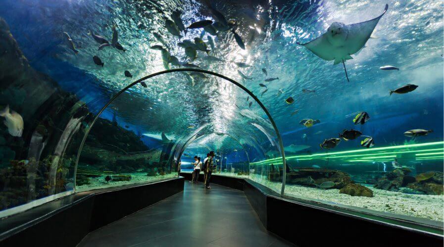An oceanarium in Manilla, Philippines