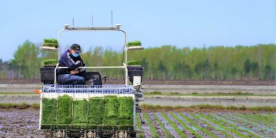 Agritech driven by data is modernizing farming in Asia