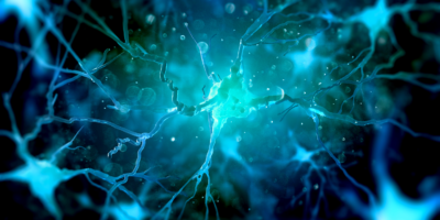 Neurons in the brain on dark background (3d illustration)