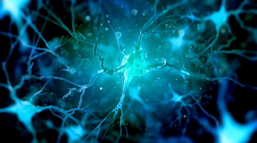 Neurons in the brain on dark background (3d illustration)